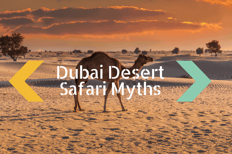 Desert Safari Myths