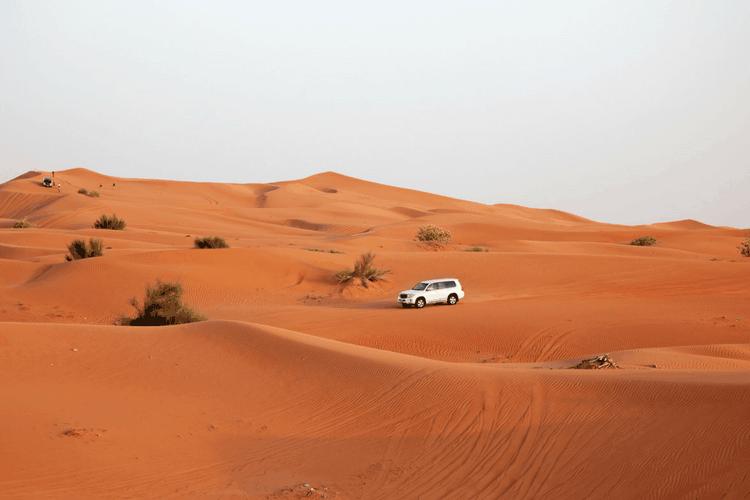 Red-Dune-Safari-Dubai